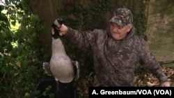 David Price, a hunting guide on Maryland's Eastern Shore, shows off a Canada goose bagged by a client.