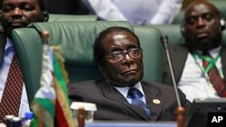 Zimbabwe's President Robert Mugabe, during the second Afro-Arab summit in Sirte, Libya, 10 Oc 2010 (file photo)