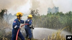 Fire fighters spray water to extinguish wildfires in Pekanbaru, Riau province, Indonesia, Feb. 27, 2014.