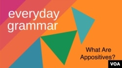 Everyday Grammar: What are appositives?