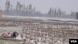 Musim dingin yang mulai melanda Afghanistan, mengancam jutaan warga mengalami kelaparan akibat minimnya persediaan pangan.