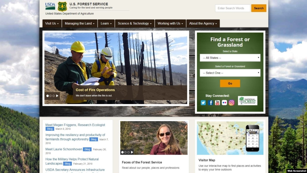 US Forest Service Interim Chief Confronts Misconduct Scandal