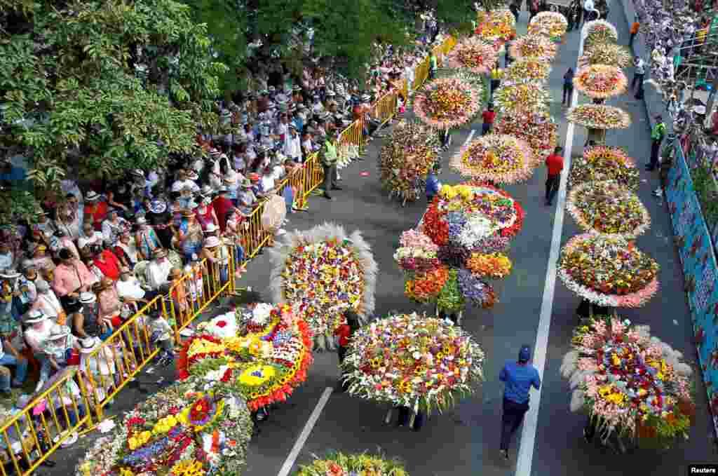 Kolumbiya - Gül bayramı