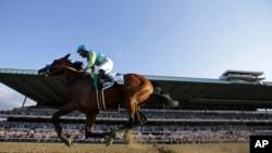 American Pharaoh dengan joki Victor Espinoza, mengalahkan tujuh pesaingnya di trek Belmont di Elmont, New York dan memenangkan pacuan kuda itu.