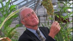 The Continuing Legacy of Norman Borlaug