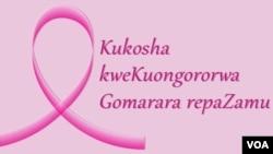 Kukosha kweKuongororwa Gomarara repaZamu
