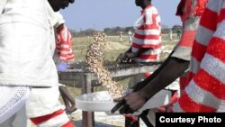 Prisons in Zimbabwe have been facing serious food shortages.