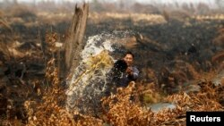 Seorang pekerja menyiram air untuk memadamkan api di perkebunan nanasnya di Tanah Putih di Rokan Hilir, Riau, Juni 2013. (Foto: Dok)