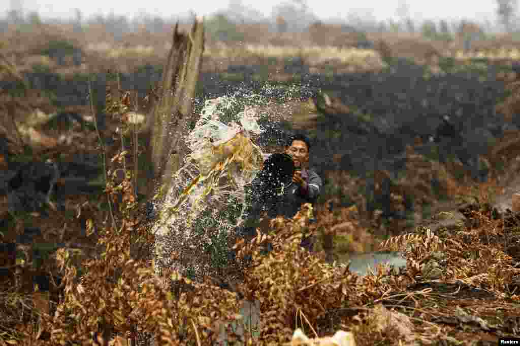 A worker pours water to extinguish a fire that is burning through his pineapple plantation in the haze-affected district of Tanah Putih in Rokan Hilir, Indonesia's Riau province. Indonesia's president apologized for the raging forest that have blanketed its neighbors Singapore and Malaysia with thick smog in Southeast Asia's worst air pollution crisis in 16 years.