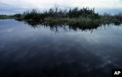 The sky reflects on the north-east boundary of the Evergaldes National Park, near Miami, on Monday, July 27, 1998.