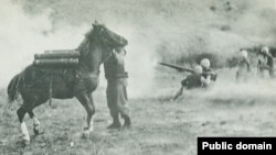 Reckless đã làm tấm khiên che chắn cho Thủy quân Lục chiến tại tuyến đầu, mang những thương binh đến nơi an toàn, và bị thương hai lần