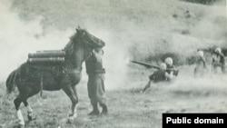 """朝鲜战争期间的""""冒失鬼"""""""