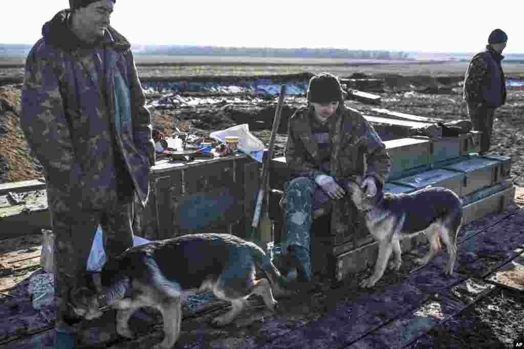 يک سرباز اوکراينی پس از ترک ديالتسفه در نزديکی آرتميوسک، در شرق اوکراين، سگی را نوازش میکند - ۳ اسفندماه ۱۳۹۳ (۲۲ فوريه ۲۰۱۵)