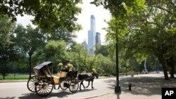 El papa Francisco recorrerá en procesión el parque central de Nueva York conocido como Central Park.