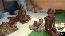 Indeks Kelaparan Global 2012 melaporkan, tingkat kelaparan di Burundi, Eritrea, dan Haiti sangat mengkhawatirkan (foto: Dok).