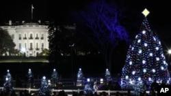 美國白宮前擺放的聖誕樹和裝飾擺設