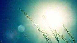 ارتباط نور آفتاب و گرمای تابستان با اختلال خلقی فصلی افراد