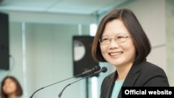 台灣民進黨主席蔡英文(民主進步黨官方網站)