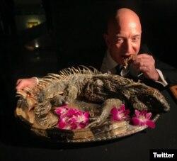 bezos iguana