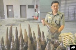 Lam Tak-fai, acting head of Ports and Maritime Command in Hong Kong holds a rhino horn smuggled into the country on a ship from Cape Town, South Africa, in November 2011