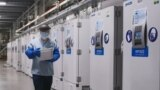A worker passes a line of freezers holding coronavirus disease (COVID-19) vaccine candidate BNT162b2 at a Pfizer facility in Puurs, Belgium in an undated photograph. (Pfizer/Handout via REUTERS)