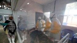 Les autorités sanitaires ont déclaré officiellement la fin de l'épidémie d'Ebola