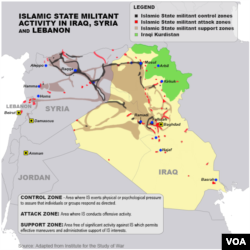 Islamic State militant areas of control