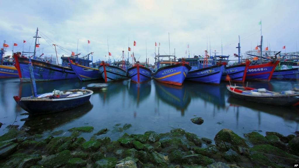 Các tàu đánh cá neo đậu tại cảng Thọ Quang, Đà Nẵng, 26/3/2016.