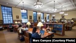 Студенти працюють в бібліотеці Коледжу Оксідентал в Лос-Анджелес, Каліфорнія, фото Марка Кампоса.