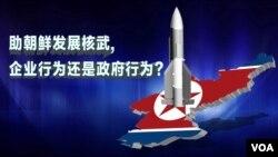 热点快评: 助朝鲜发展核武,企业行为还是政府行为?