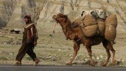 Mintaqa va Afg'oniston tinchligi - sharqshunos Begijon Ahmedov bilan suhbat