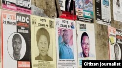 Zimbabweans in the Diaspora are demanding a say in the national elections