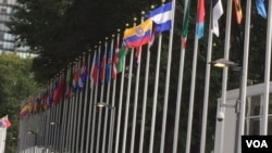United Nations Flags Entrance