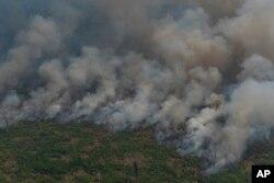 ایمزان جنگل میں 80 ہزار مقامات پر آگ کی نشاندہی ہوئی ہے۔