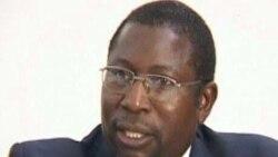 No Partnership With Mujuru, Declares Opposition Leader Elton Mangoma