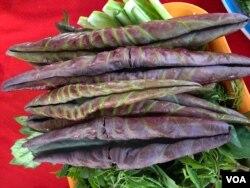 Cùng hình dưới: lá sen non làm rau và dùng lá sen cuốn gỏi cá, hạt sen rang (thay vì đậu phọng rang) là những món ăn quen thuộc của cư dân Đồng Tháp. [Photo by Ngô Thế Vinh]