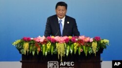 China's President Xi Jinping delivers an opening speech of the APEC CEO Summit as part of the Asia-Pacific Economic Cooperation (APEC) Summit at the China National Convention Center in Beijing, Nov. 9, 2014.