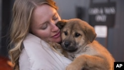 Humane Society International animal rescue responder Masha Kalinina holds a puppy, one of 23 rescued by the organization from a dog meat farm in Ilsan, South Korea, at Dulles International Airport in Washington, D.C.