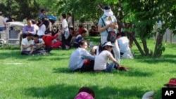 北京公园游人多 中国人看上了山核桃