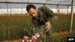 İsrail, Gazze'ye Ablukayı Hafifletiyor