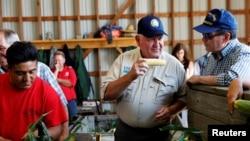 美國農業部長珀杜2018年8月23日在紐約州視察一個家庭農場的玉米生產情況。