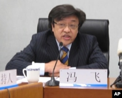 中国国务院发展研究中心研究员冯飞