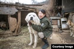 国际人道协会韩国办事处《终结狗肉交易运动》经理金娜拉(Nara Kim)(照片提供:金娜拉)