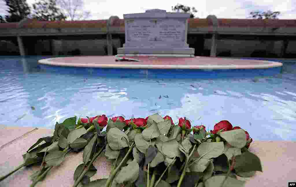 Long-stemmed roses rest on the reflecting pool wall at the crypts of civil rights leader the Rev. Dr. Martin Luther King Jr., and his wife Coretta Scott King. (AP)