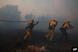 FILE - Firefighters put out a wildfire burning in an orchard in Santa Paula, Calif., Dec. 5, 2017.