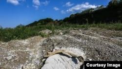 Iz Općine Kalesija tvrde da tuzlanski kruks, koji je pretvoren u neopasni otpad, nije ostavljen na njihovoj deponiji. Međutim, novinari CIN-a su ga tamo pronašli i odnijeli na analizu. (Foto: CIN)