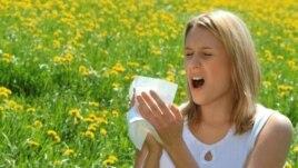 Çarçafët që luftojnë alergjitë