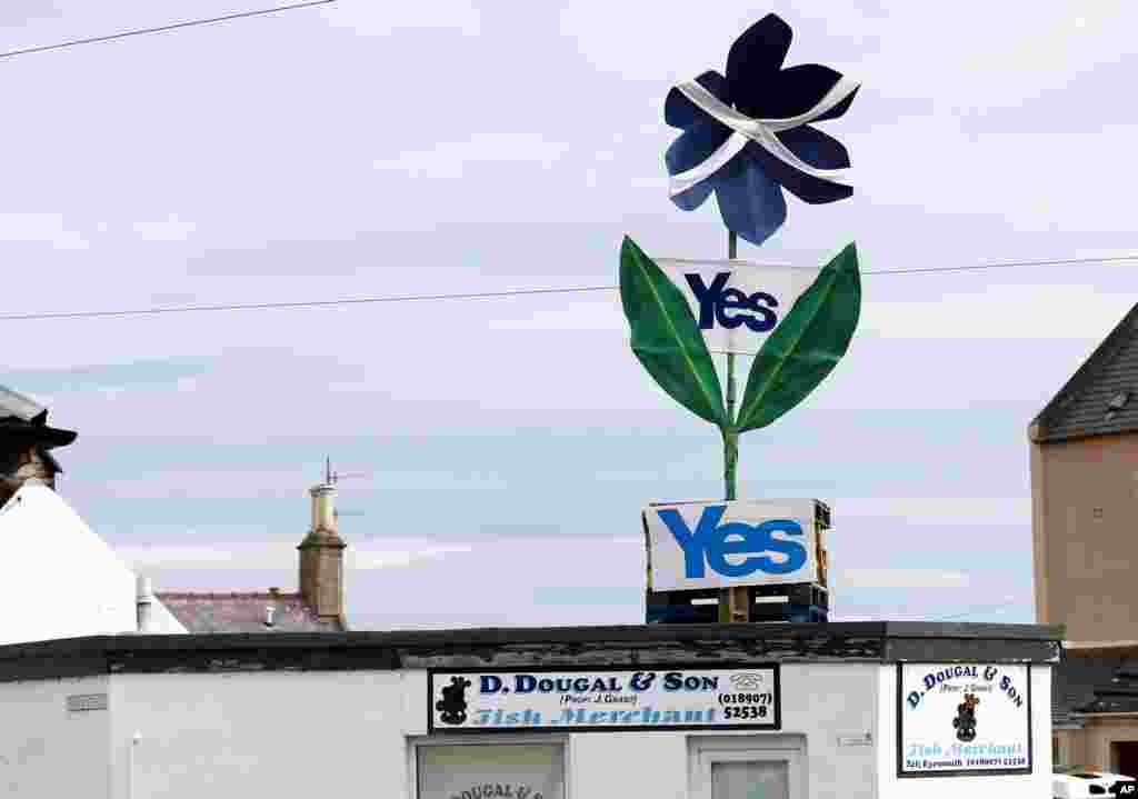 A shopowner displays a Yes sign above his shop in Eyemouth, Scotland. Polls predict a very close vote in the upcoming landmark referendum on Scottish independence from Britain on September 18.