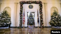 Рождественская ель в Голубой комнате Белого дома (в центре). Вашингтон, округ Колумбия