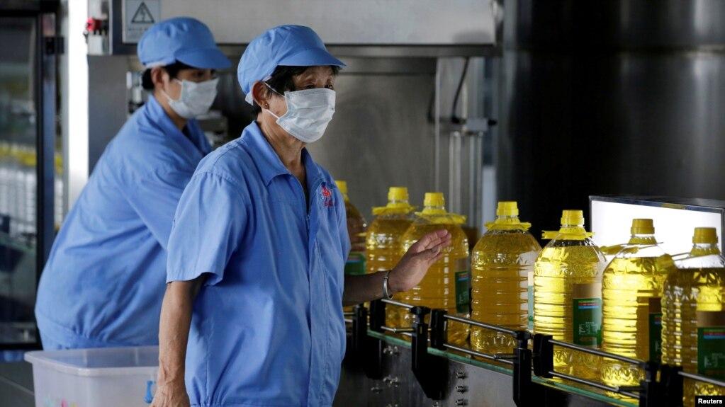 2018年7月4日,中国山东省曲阜市,在粮油工业和进出口公司的工厂,生产线上的工人和瓶装豆油。这些豆油是用美国大豆提炼的。7月6日, 美国宣布对价值340亿美元的中国产品加征关税,中国随即对同等价值的美国产品加税,其中包括大豆。此前,中国市场上80%的大豆来自美国,大约有60%的美国大豆出口到中国,中国是美国大豆最大的市场。中国市场上豆粕价格的上涨引发对食品价格上涨的担忧。豆粕是大豆榨油后的渣,是猪饲料的重要原料,而中国是世界上最大的猪肉消费国。